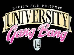University Gang Plug 14